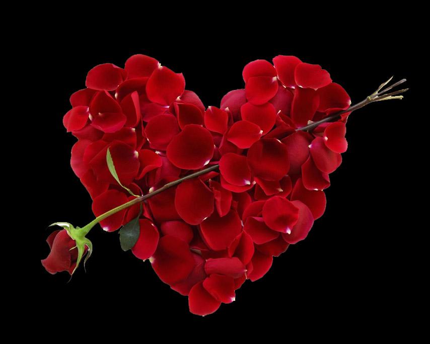 Valentines Late Evening